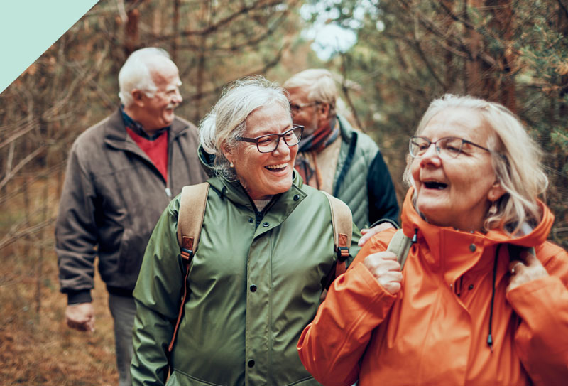 A group of older people hiking in the woods.